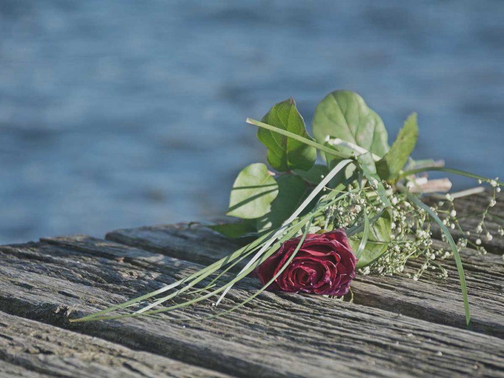 Seebastattung Wasser Rose